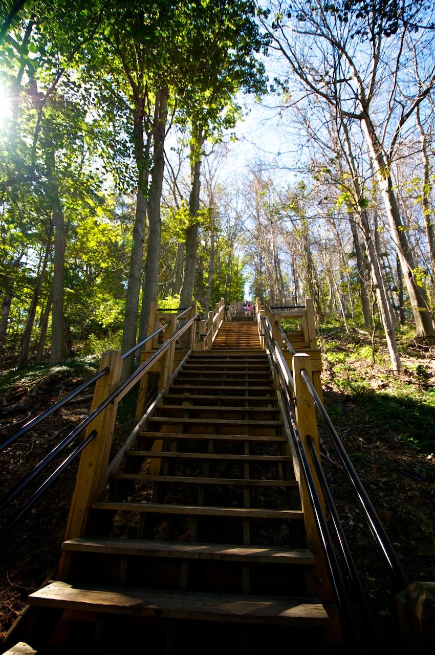 Mount Baldhead Stairwell