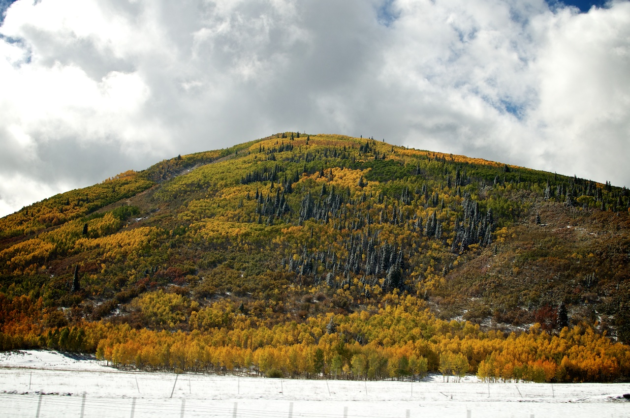 Bright Mountain Colors 2